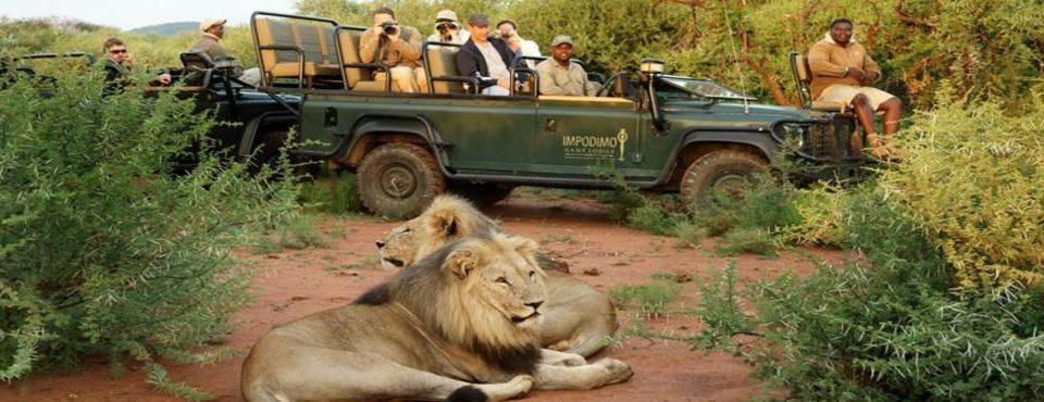 Namibia Deluxe e Riserva di Madikwe – 12 giorni