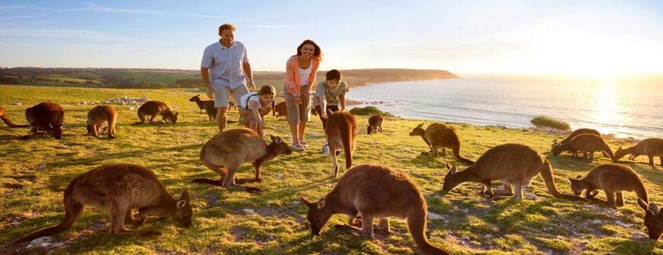 Australia Wonders tour individuale – 18 giorni
