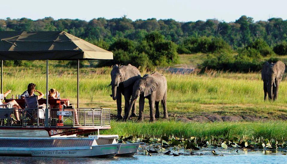 Botswana, Città del Capo e Mozambico,01 ottobre 2012