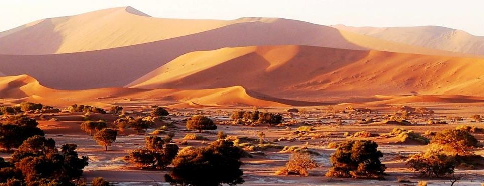 Best of… Namibia e  Sudafrica