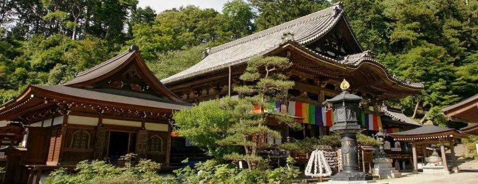 Giappone in Libertà – 13 giorni