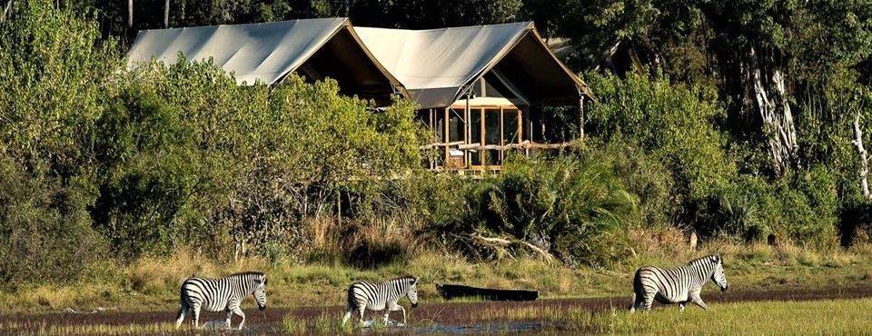 Grandi Safari tra Zimbabwe e Botswana – 9 giorni